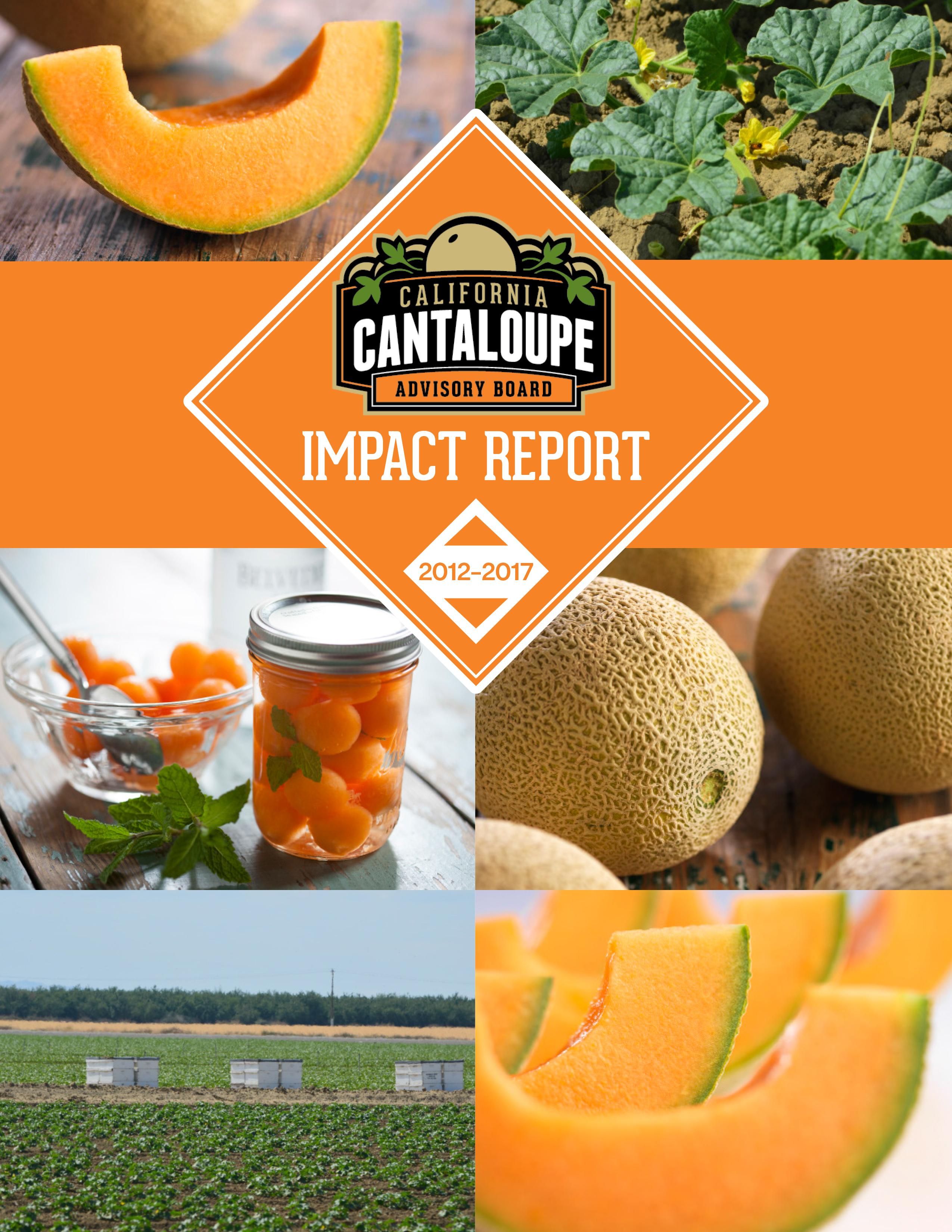 CCAB Impact Report 2012-2017 cover
