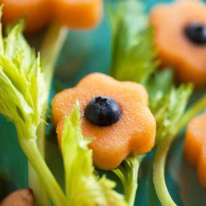 Cantaloupe-16_-2 sq